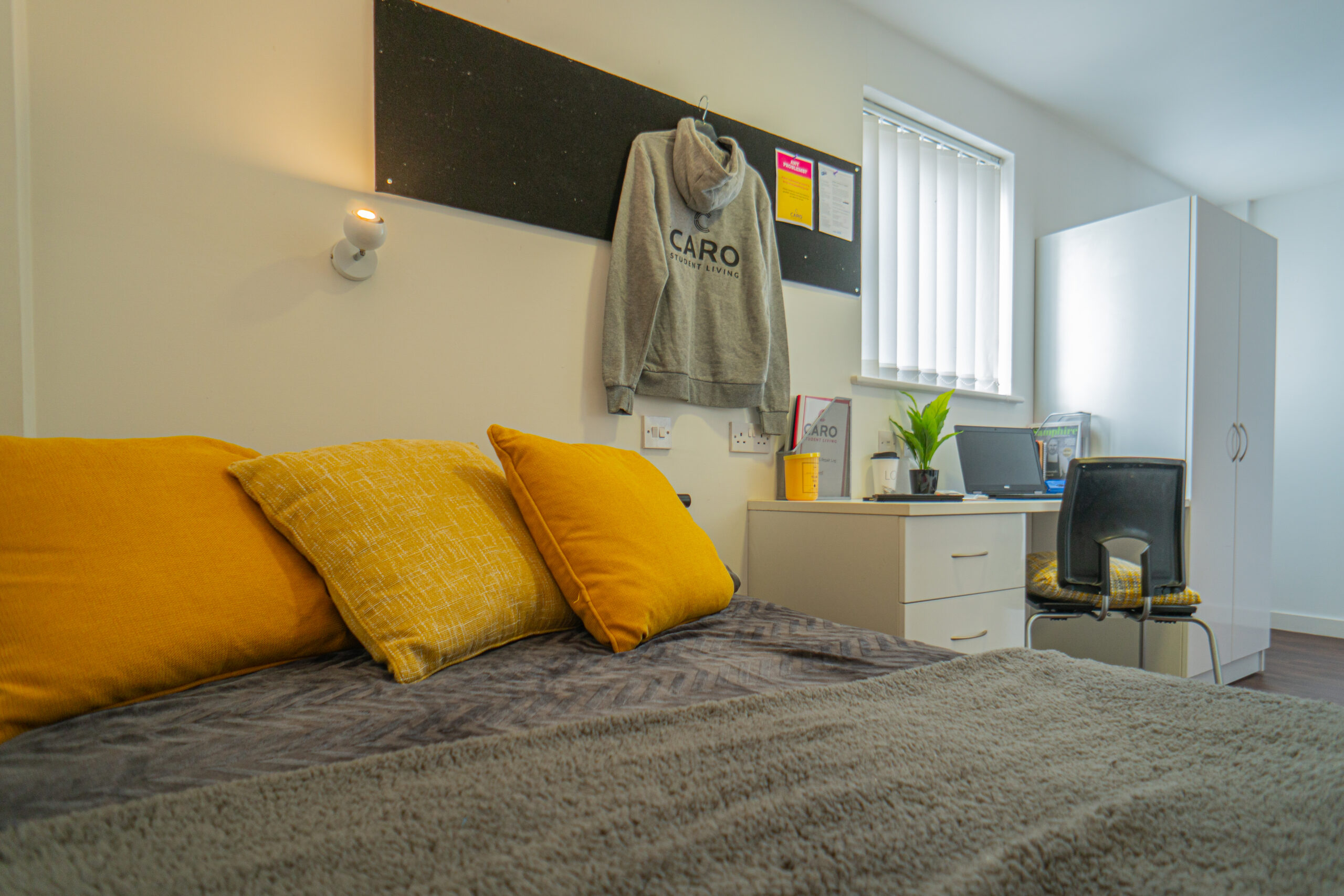 Wide Shaw Studio Accommodation